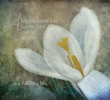 A life filled with love by vigor