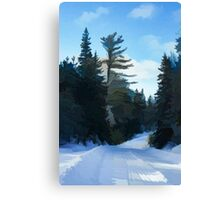 Winter Mood Impressions - Snowy Road in Algonquin Canvas Print