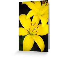 Yellow Lily Flower Art Greeting Card