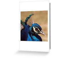 Indian Peacock Headshot  Greeting Card