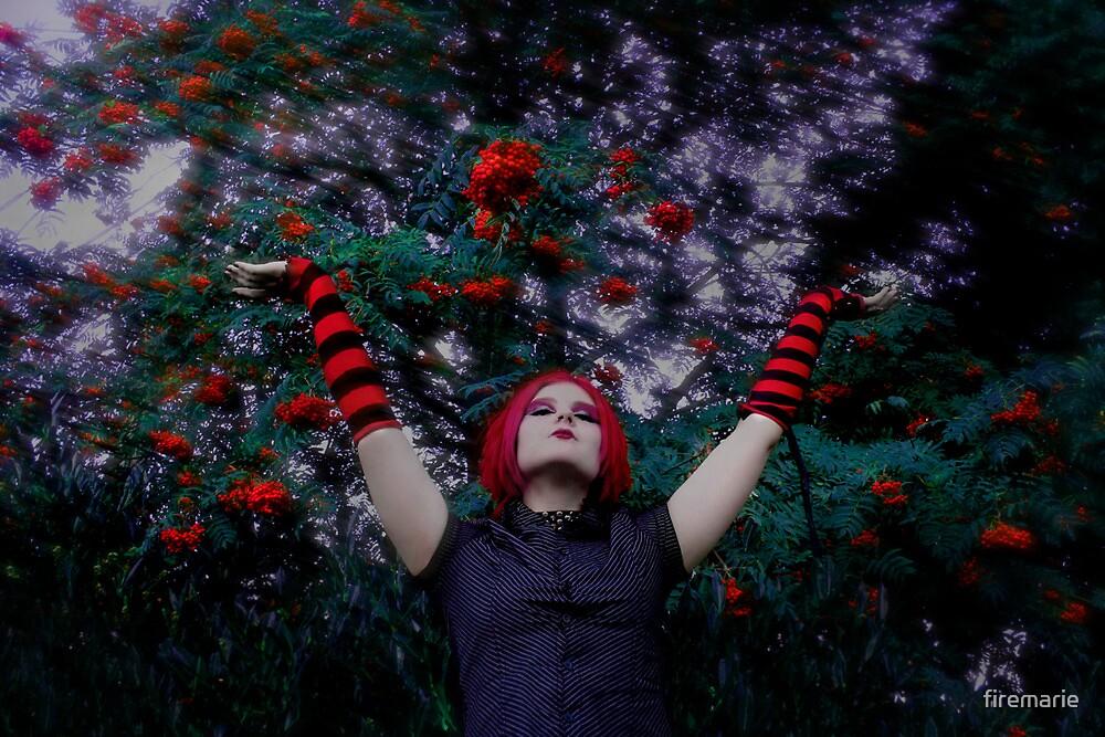 Berries by Marie Arneklev