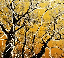 Gold Abstract Tree Art by Christina Rollo
