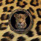 OS X 10.0 Cheetah by Dave Martin