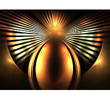 Chestnut Wings Photographic Print