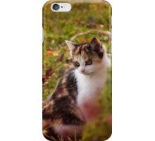 Autumn Kitten  iPhone Case/Skin