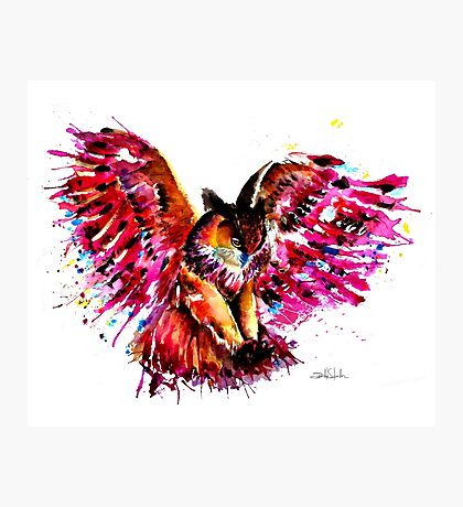 Flying Owl Photographic Print