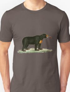Brown Bear with long curly tongue Vintage Illustration T-Shirt