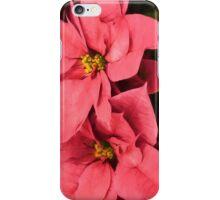 Hot Pink Poinsettias a la Georgia O'Keeffe iPhone Case/Skin