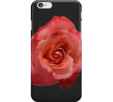 Ombré Red Garden Rose III - Hipster/Pretty/Trendy Flowers iPhone Case/Skin