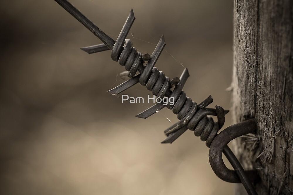 Rusty Webs by Pam Hogg