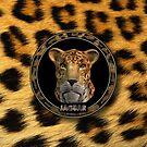 Jaguar - Mac OS X 10.2 by Dave Martin