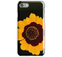 A Beautiful Contrast of Light and Dark  iPhone Case/Skin