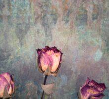 Three Roses  Sticker