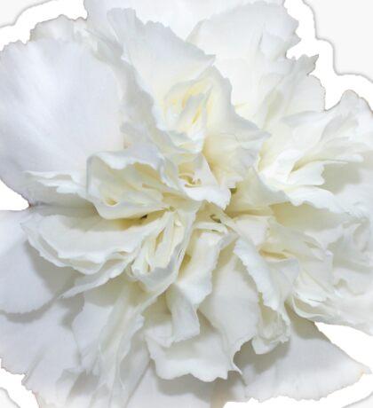Single White Carnation - Hipster/Pretty/Trendy Flowers Sticker
