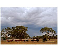 Rain's on the way! Photographic Print