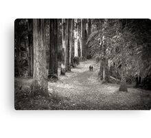 Once upon a time.... Canvas Print