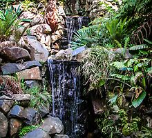 Waterfall garden by Louise Delahunty