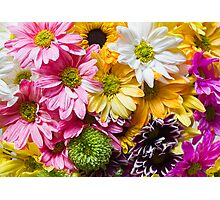 Colored Flowers Photographic Print
