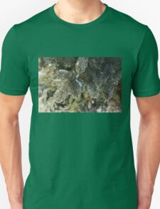 Mother Nature's Christmas Decorations - Pine Branches Unisex T-Shirt