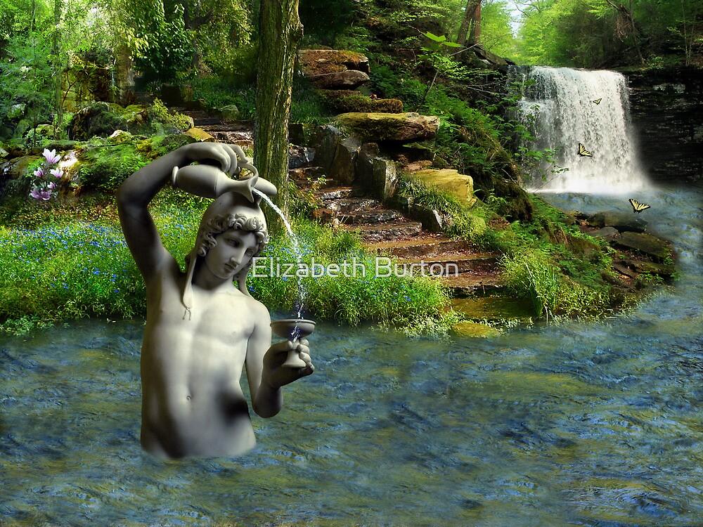 A Drink Of Life by Elizabeth Burton