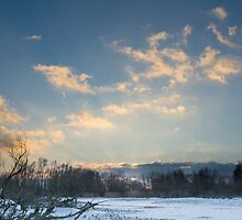 Snowy Winter Danube Backwater Landscape after Sunset by Inimma