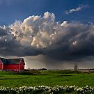a spring storm by iamwiley