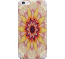 Spring Delight-R1 iPhone Case/Skin