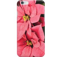 Pink Poinsettias Painting - Christmas Impressions iPhone Case/Skin