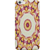 Spring Delight-R20 iPhone Case/Skin