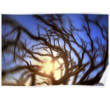 Spinning Sunset Poster