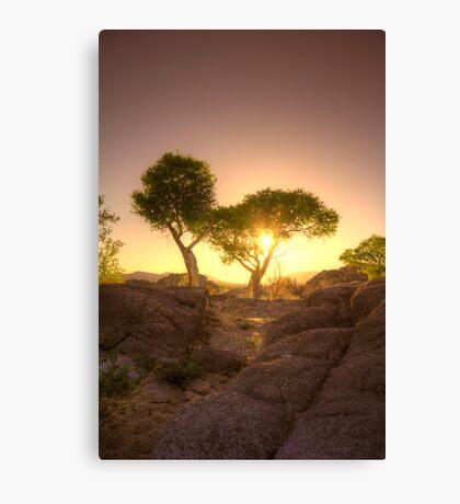Shading Sunset Canvas Print