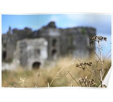 Cow Parsley Castle (& a Ghost Gorilla!) Poster