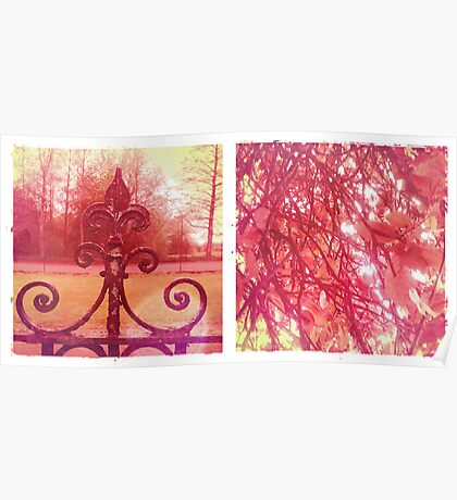 Cambridge Collection: Pink Park Poster