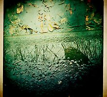 Cambridge Collection: Natural Mirror by Sybille Sterk