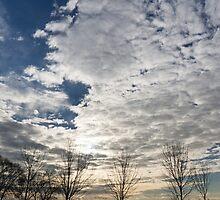 The Pearly Cloud  by Georgia Mizuleva