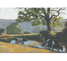 Brimley Farm Photographic Print