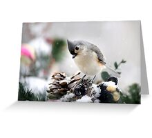 Playful Titmouse Greeting Card