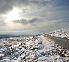 Woodhead in the Snow 02 by James Kowacz