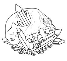 Animal Skull Outline Photographic Print