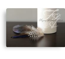 Feathers... Canvas Print