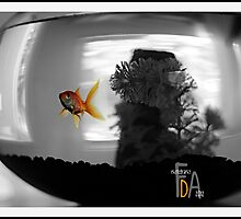 a fishy tale by Nadja  Farghaly