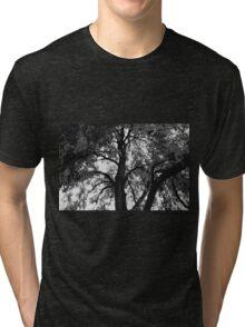 Abstract Honey Locus Tree Tri-blend T-Shirt