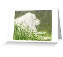 Great Pyrenees Dog Art Green Grass Cathy Peek Pets Greeting Card