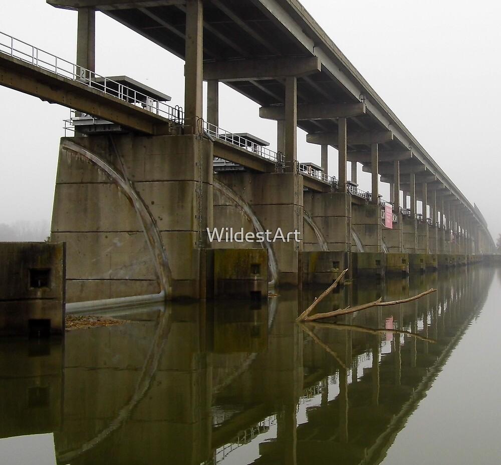River Reflections by WildestArt