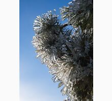 Toronto Ice Storm 2013 - Pine Needle Flowers in the Sky Unisex T-Shirt