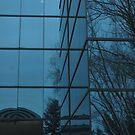 Winter's Reflection by nadinecreates