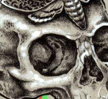 Skull and Hawkmoth Sticker