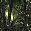 Enchanted Forest by Margherita Bientinesi