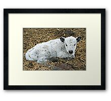 I'm the Baby Of the Group Framed Print