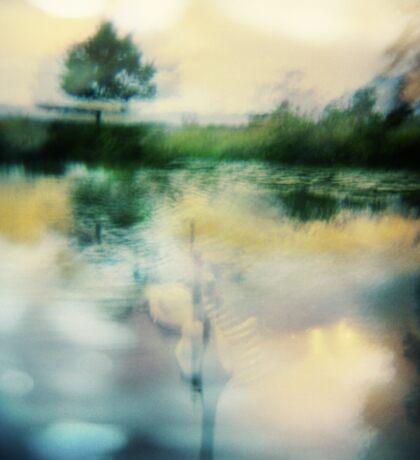 A Midnight's Summer Swan Lake Sticker